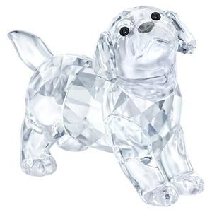 Cucciolo di Labrador Swarovski