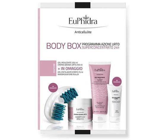Euphidra body box