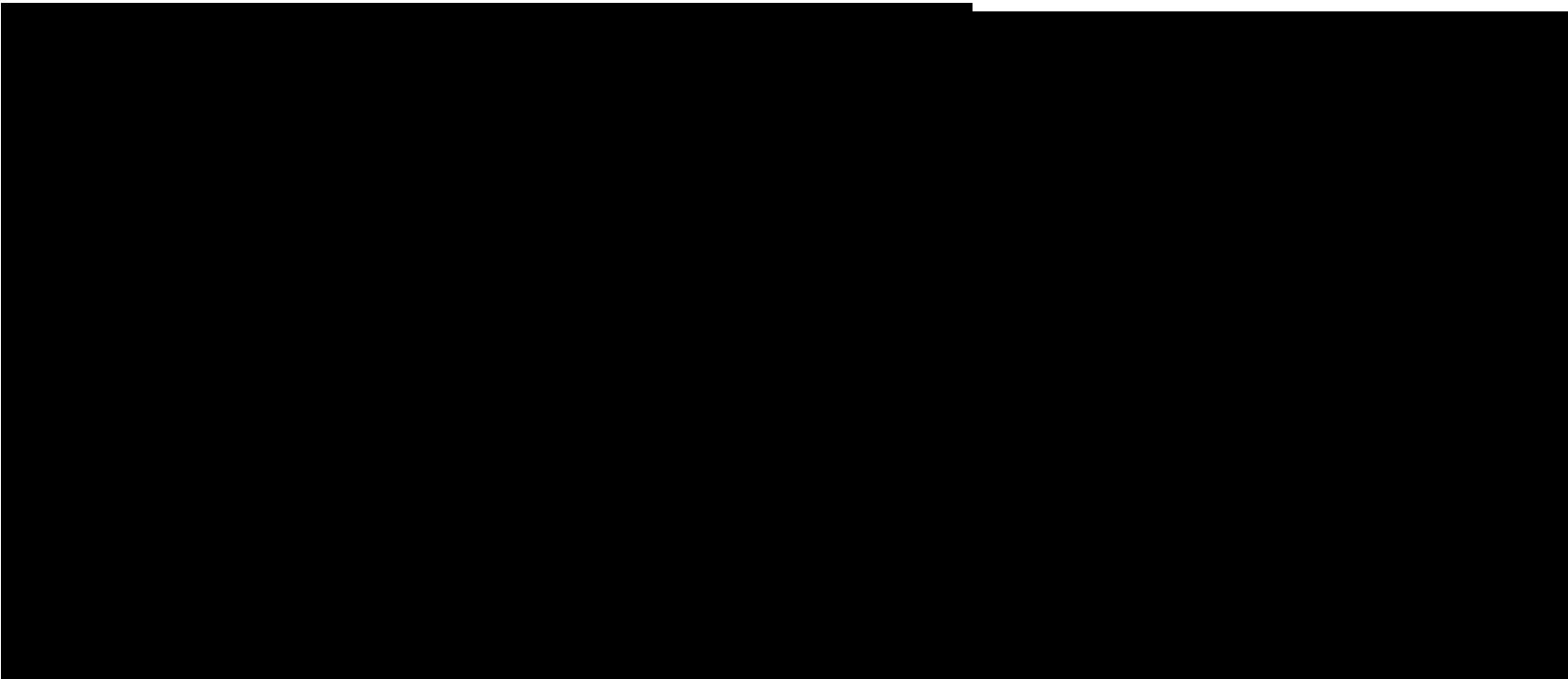 Logo antonella capi firmati