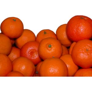 Box Clementine 7 kg