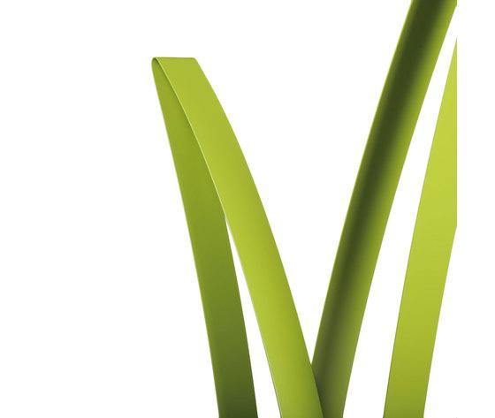 Erba verde 3