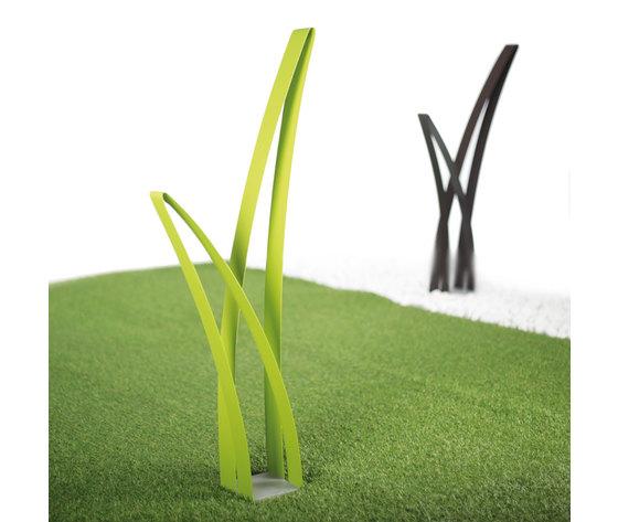 Erba verde 7