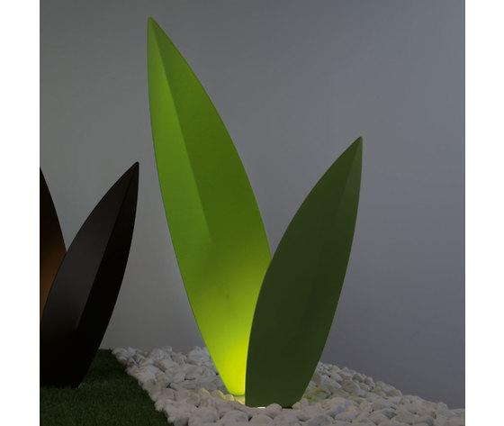 Erba matta verde 7