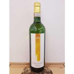 Roero Arneis vino bianco