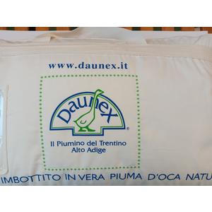 Guanciale in Piuma  DAUNEX
