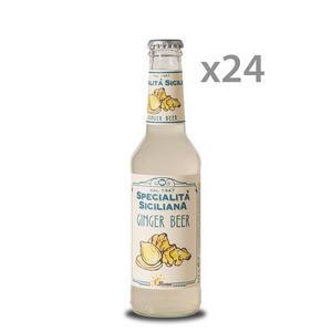 BONA BIBITA GINGER BEER  CL. 27,5X24