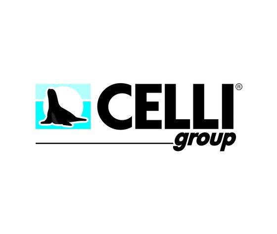 Logo celli group positivo hr