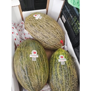 Melone cuore dolce bianco