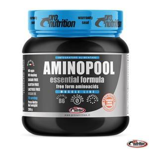 AMINOPOOL ESSENTIAL POLVERE 200 GR