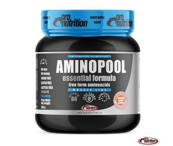 Aminopool essential polvere 200g