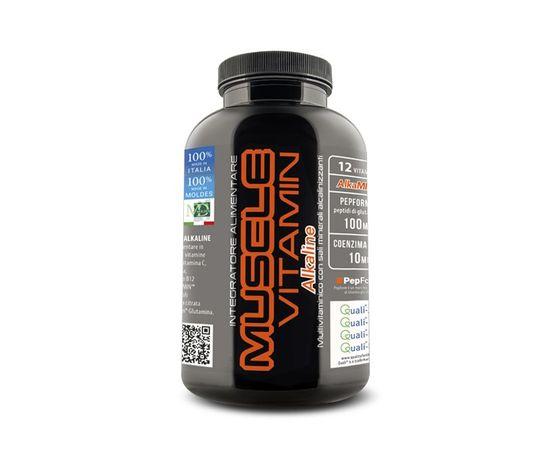 Muscle vitamin web 1