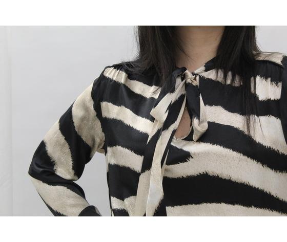 Camicia zebrata 2