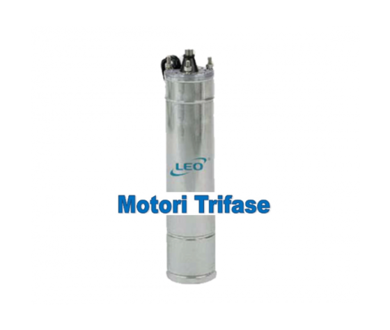 Motore trifase leo