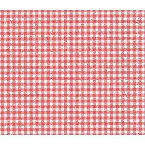15Kg Carta accoppiata per alimenti 37x50 60gr