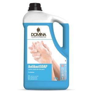 Sapone liquido lavamani antibatterico 5Kg (2 Pezzi)