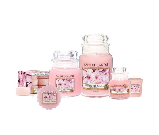 Cherry blossom yankee candle family big