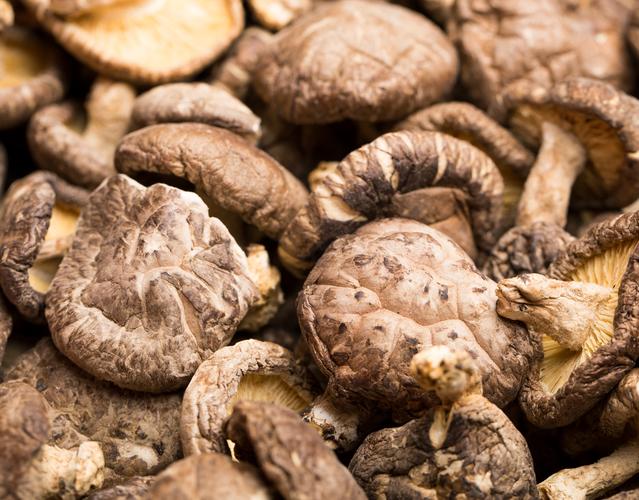 Dried mushroom vlczddw