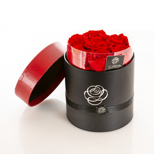 Rose stabilizzate cilindro piccolo