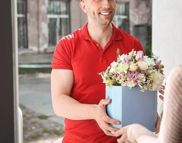 Fiori e piante la primula flowers   coffee avigliana 082 2880w