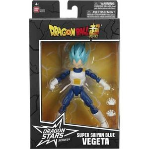 Vegeta Super Sayan Blue Dragon Ball Z