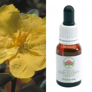 Hibbertia 15 ml Bush Flower essence