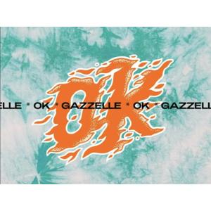 Gazzelle Ok