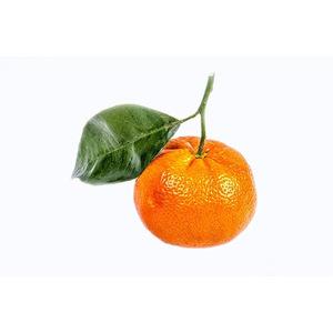 Mandarino Tardivo Kg10