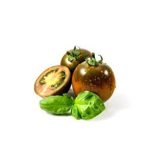 Pomodoro Camone Sicilia