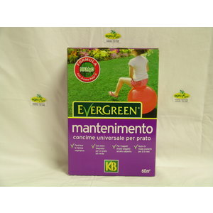 CONCIME EVERGREEN MANTENIMENTO 20.5.8+2 KG. 2