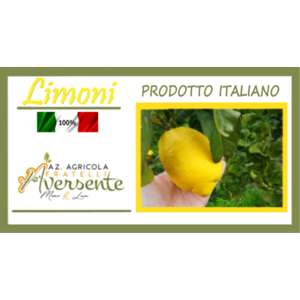 Limoni di Calabria 5 kg