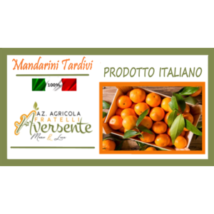 Mandarini Tardivi di Calabria 15kg