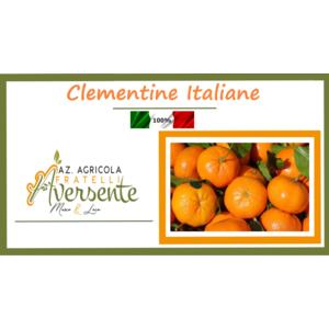 Clementine della Piana di Sibari 3 kg