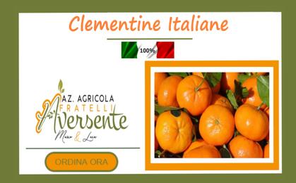 Clementine e commerce azienda agricola fratelli aversente   calabria