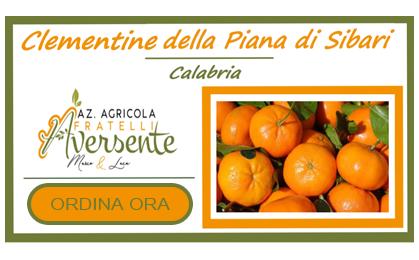 Banner clementine