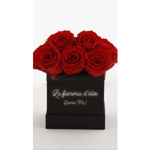 BOX 10 ROSE ROSSE OLANDESI
