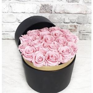 BOX 21 ROSE