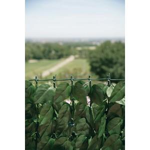 Siepe Verdecor a foglie tipo lauro ml. 1.5x3
