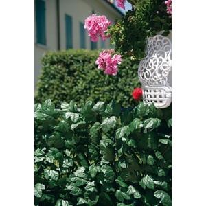 Siepe verde color a foglia tipo edera ml. 3x1.5