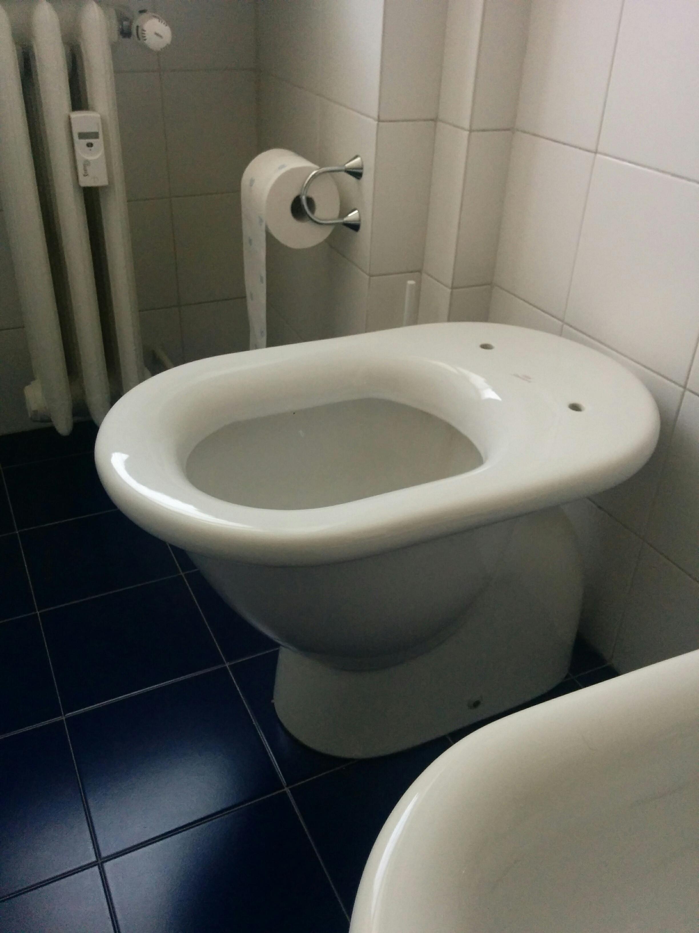 Sedile Fiorile Ideal Standard.Sedile Wc Copriwater Per Modello Fiorile Marca Ideal Standard 59
