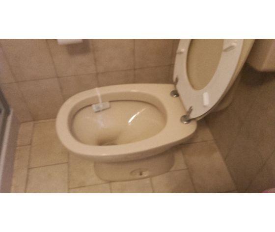 Sedile wc copriwater per modello lago mono marca dolomite for Modelli water ideal standard
