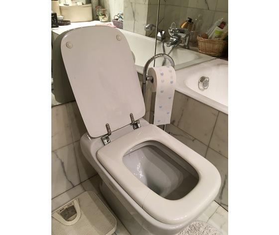 Sedile Conca Ideal Standard Originale.Negozio Di Sconti Online Copriwater Ideal Standard Conca Bianco