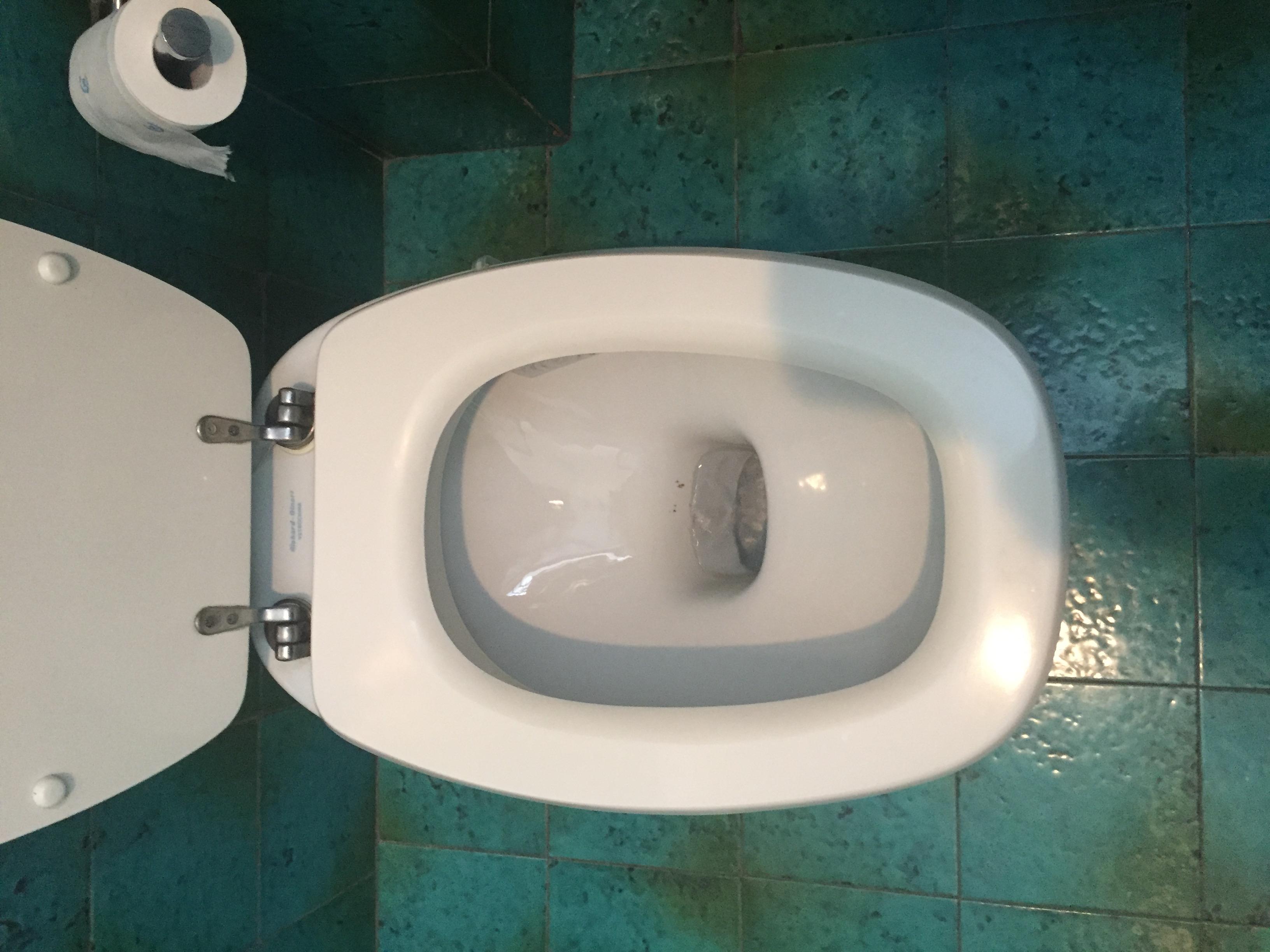 Sedile wc copriwater per modello italica marca pozzi ginori il tuo bagno online - Richard ginori sanitari bagno ...