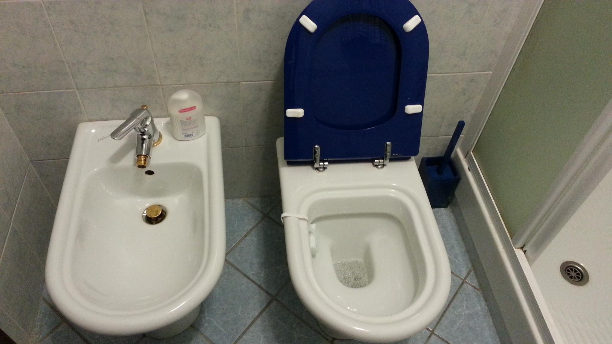 Sedile Wc Dolomite Clodia Originale.Sedile Wc Copriwater Per Modello Clodia Soft Close Marca Dolomite