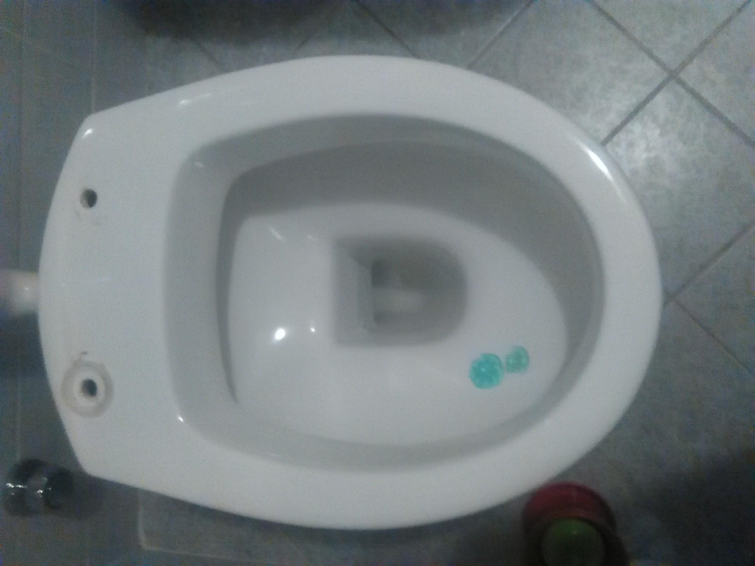 Sedili Wc Per Disabili : Sedile wc copriwater per modello lara marca ceramica cielo il tuo
