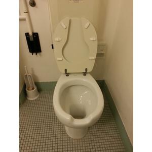 Sedile Wc Copriwater per modello Chela a terra Disabili marca Sanitosco anello aperto con coperchio