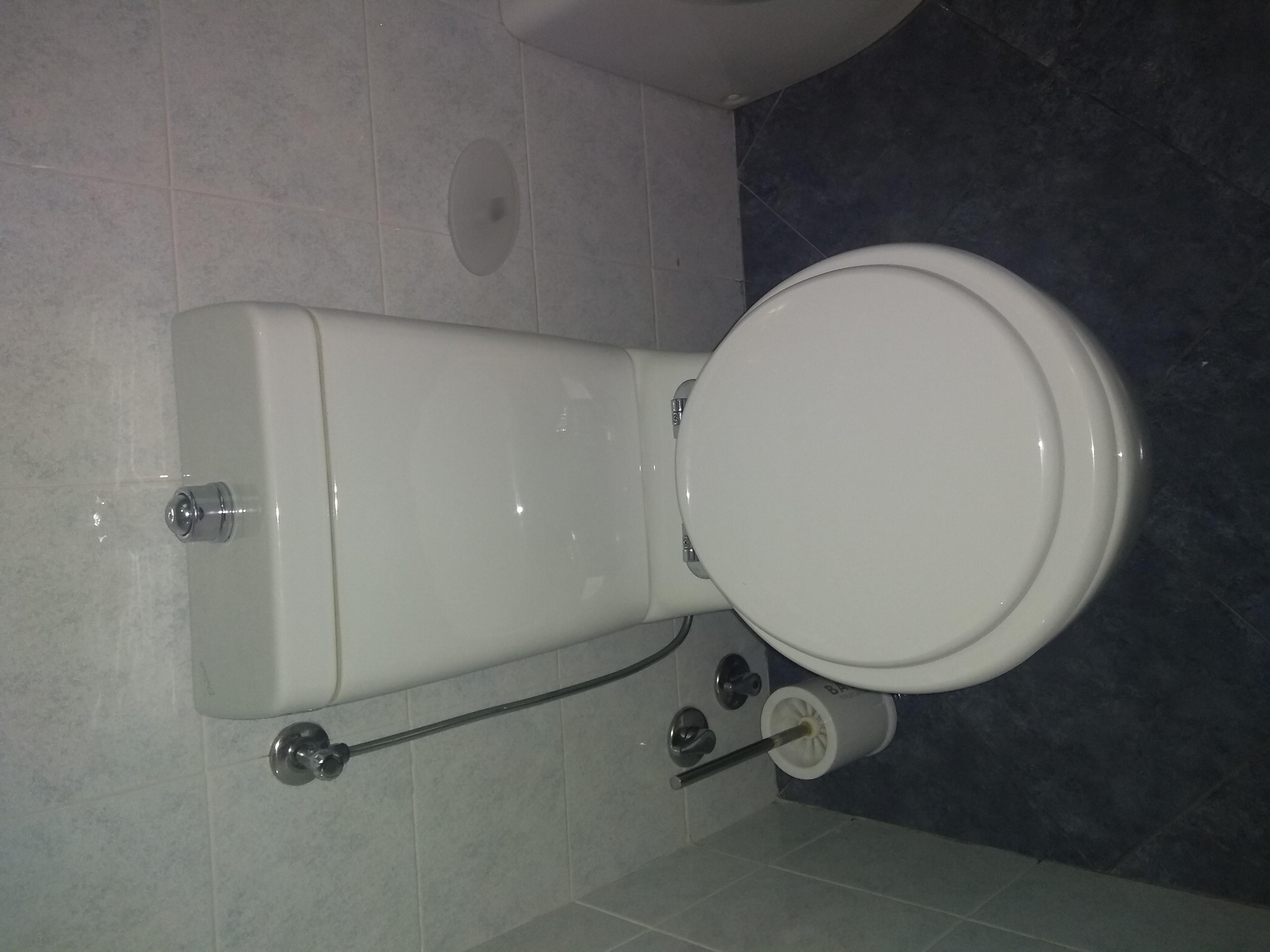 Ceramica Dolomite Zelig Prezzi.Sedile Wc Copriwater Per Modello Zelig Monoblocco Marca Dolomite