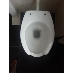 Sedile Wc Copriwater per modello Disabile aperto marca Asd