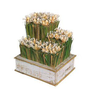 Gecas Regali dal mondo - Ornamento Fibre Conchiglie Misura 24 x 20 x 16 cm