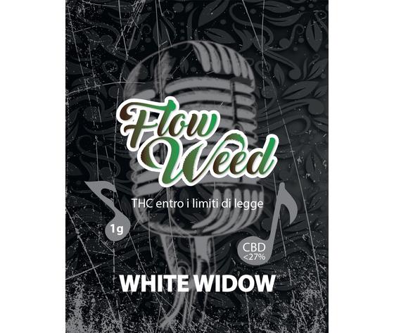 White widow %281%29 1