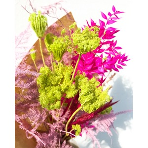 SPRING BUNCH - COLORFUL